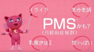 pms 市販薬 副作用
