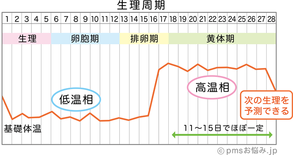 更年期 妊娠 基礎体温